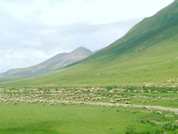 Экскурсия по Военно грузинской дороге - Ворота Алан